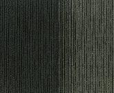 SKYLİNE 01